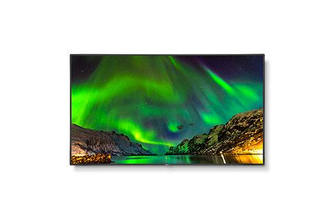 NEC+C651Q+65%22+4K+UHD+Commercial+Display