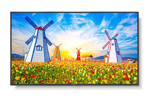 NEC+M651+65%22+UHD+Professional+Display