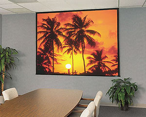 Projector People: Draper Projector Screen - Access/Series E