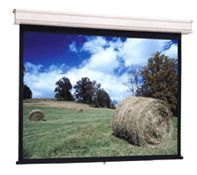 Projector People: Da-Lite Projector Screen - Advantage Deluxe Electrol