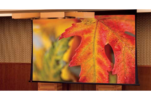 Projector People: Draper Projector Screen - Paragon/Series V