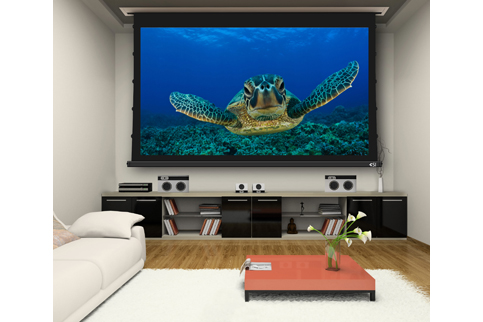 Projector People: Screen Innovations Projector Screen - 3 Series Motorized