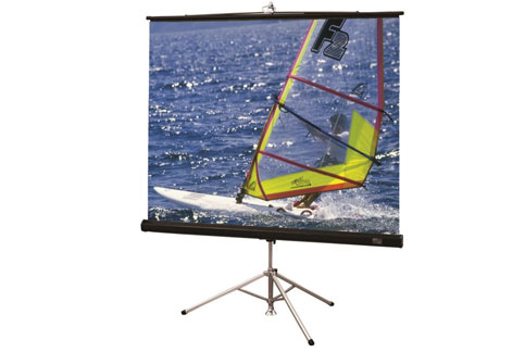 Projector People: Draper Projector Screen - Diplomat/R